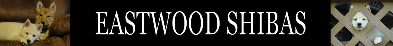 EASTWOOD SHIBAS